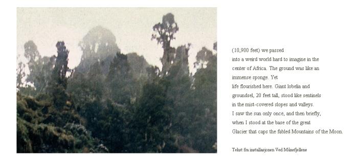 Ved Månefjellene. Detalj. Foto 100 x 135 cm, tekst fra utklipp.