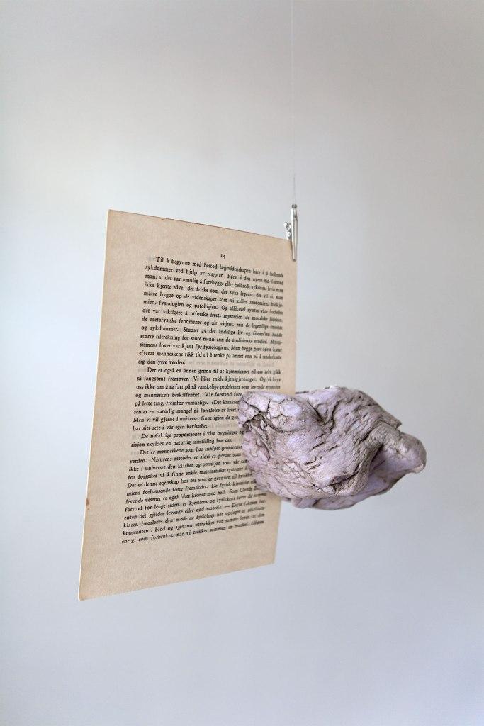 Mennesket det ukjente (1937). Naturlig formet falsk stein, side 13/14 fra bestselgeren Mennesket det ukjente fra 1937, 20x12x22 cm, 2011.